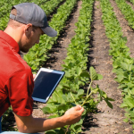 farm manager career